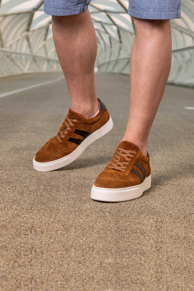 vans schoenen veldhoven