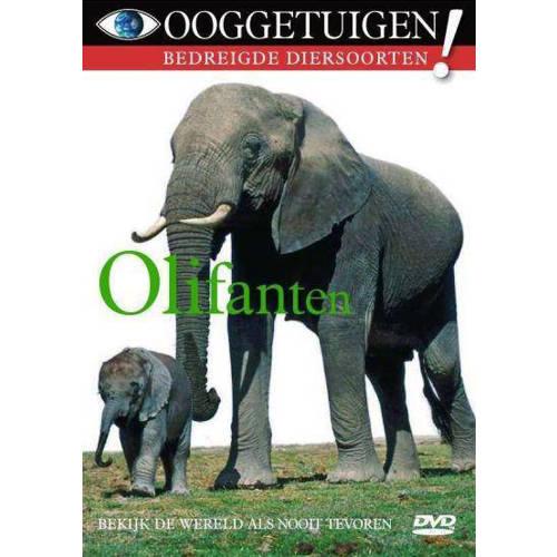Ooggetuigen - olifanten (DVD) kopen