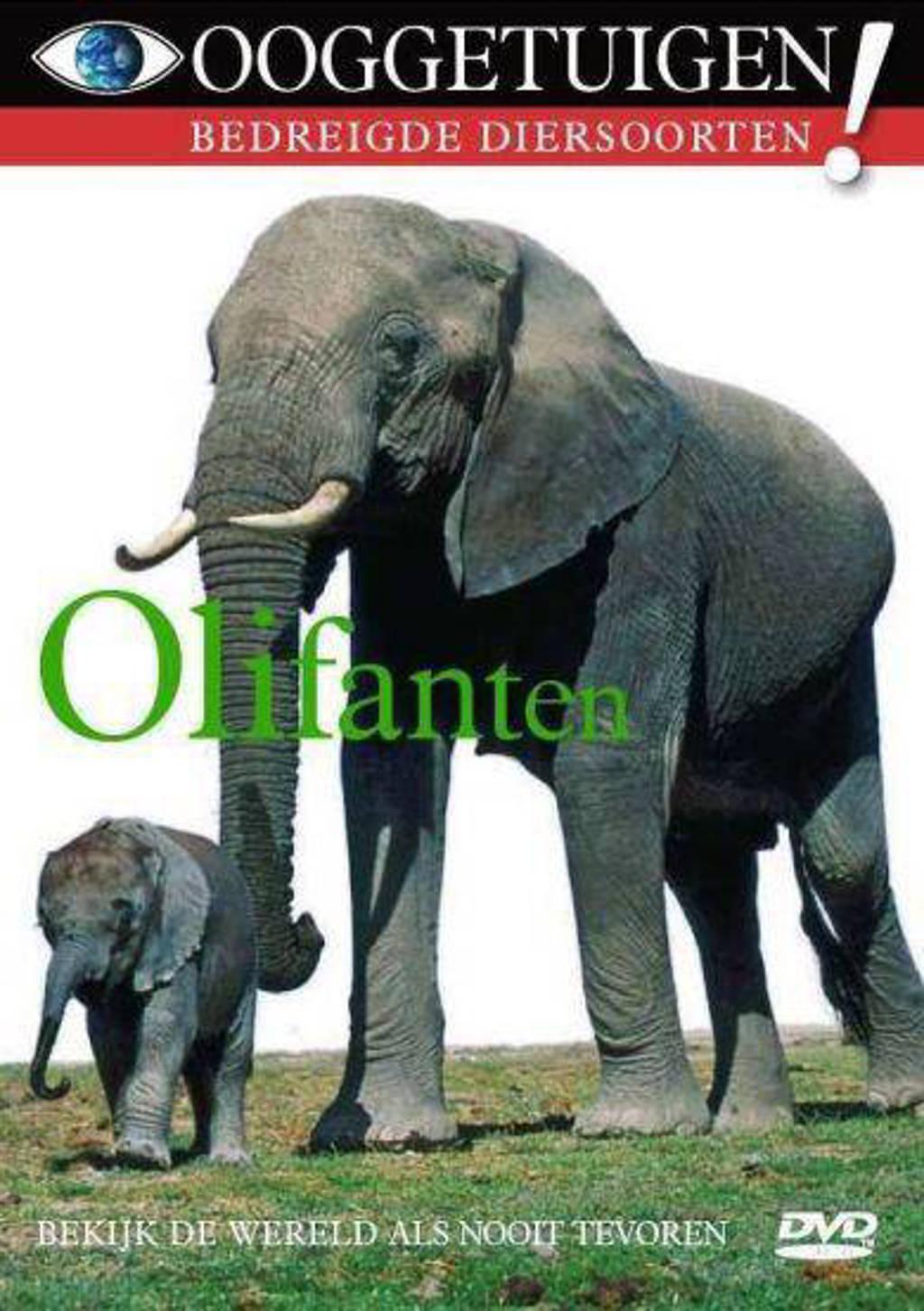 Ooggetuigen - olifanten (DVD)