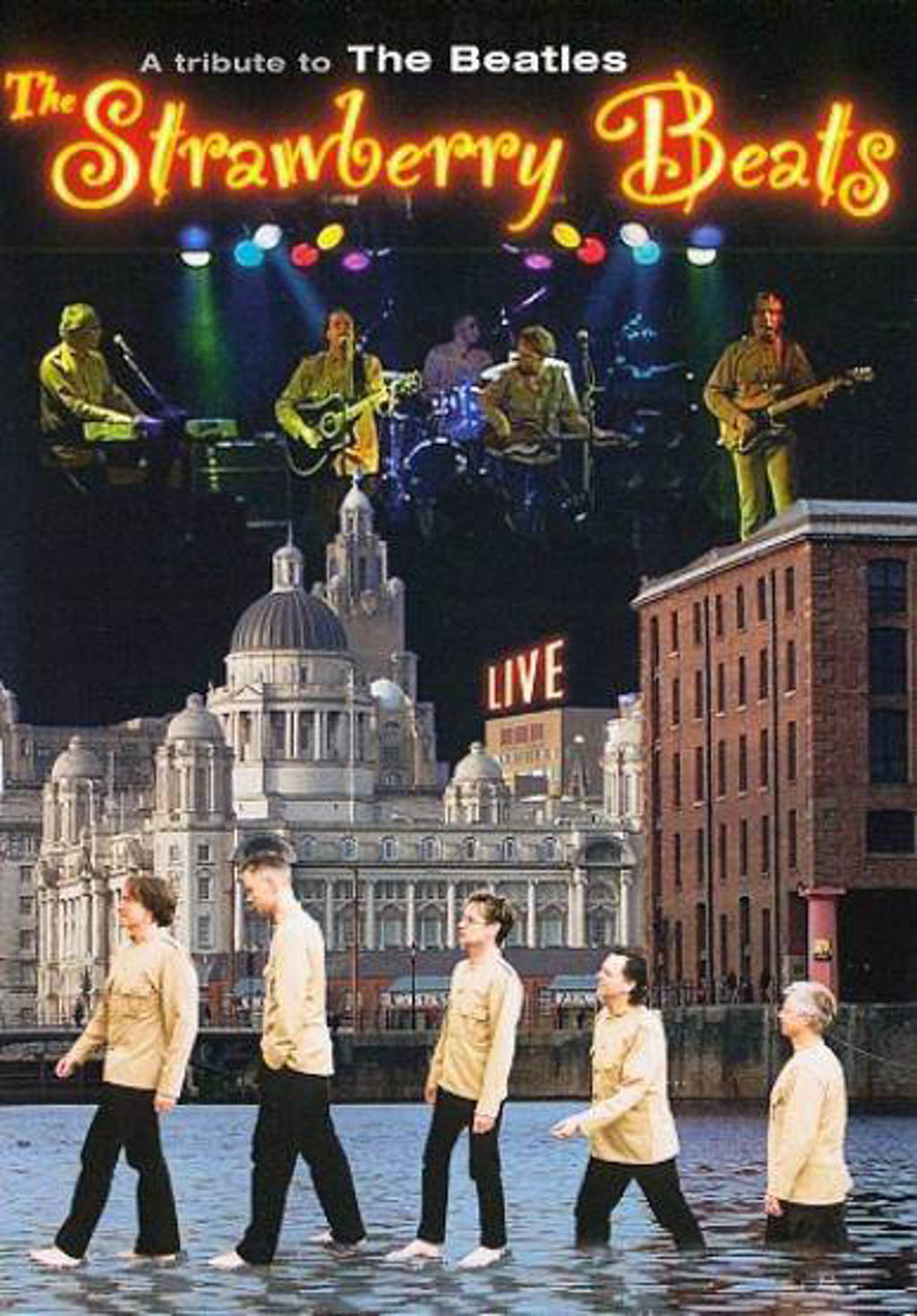 Strawberry beats - tribute to the Beatles (DVD)