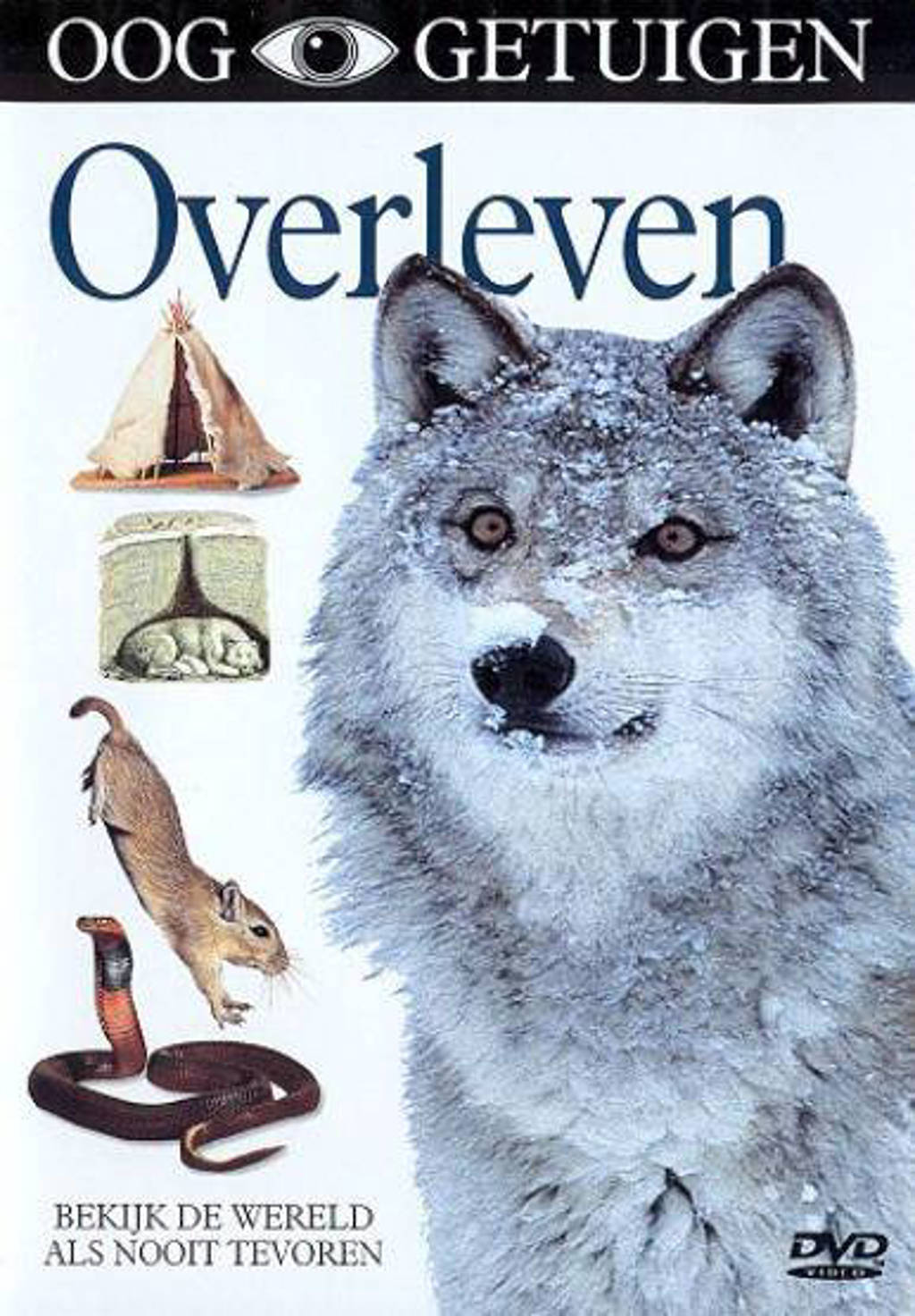 Ooggetuigen - overleven (DVD)