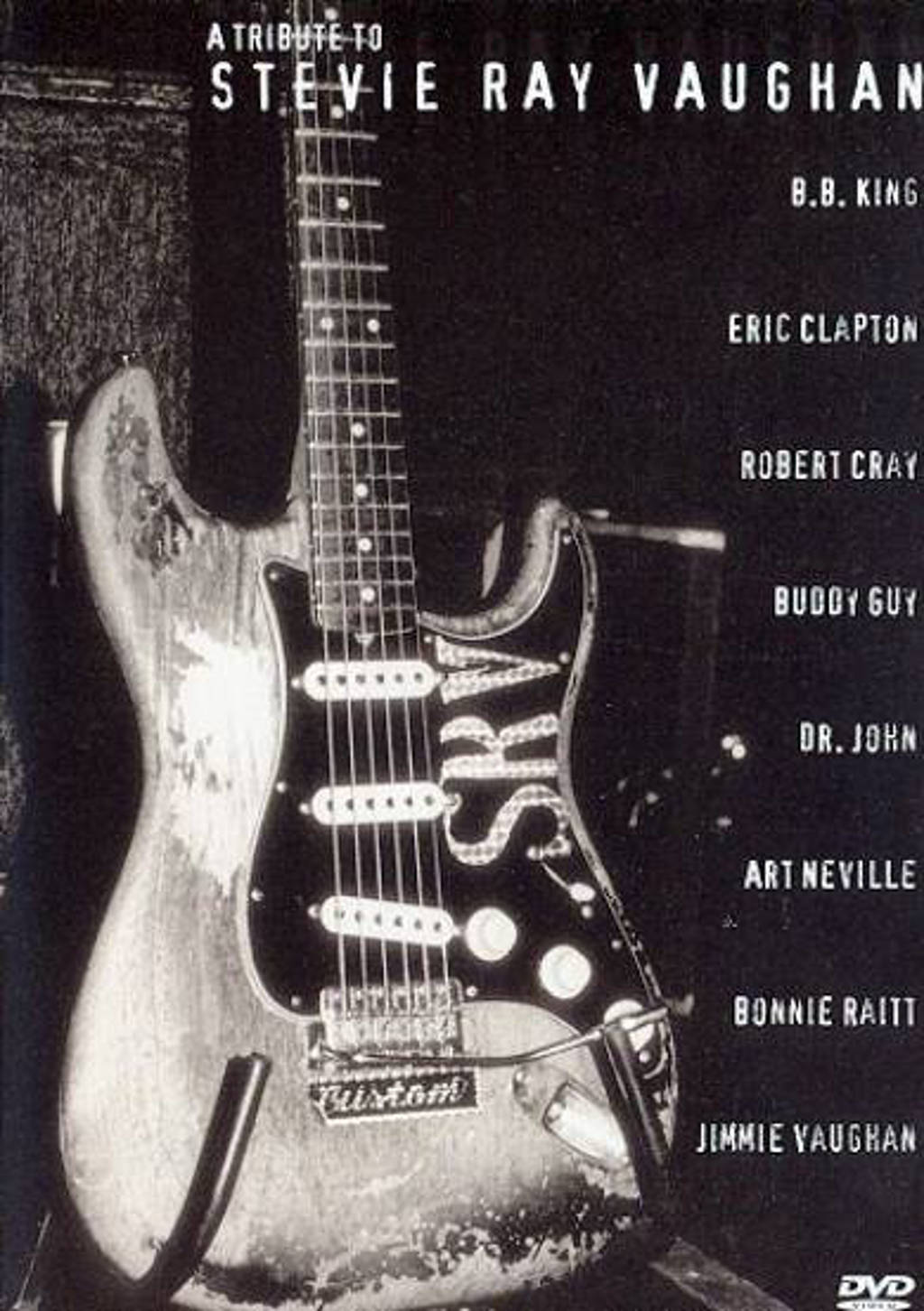 Stevie Ray Vaughan - tribute to (DVD)