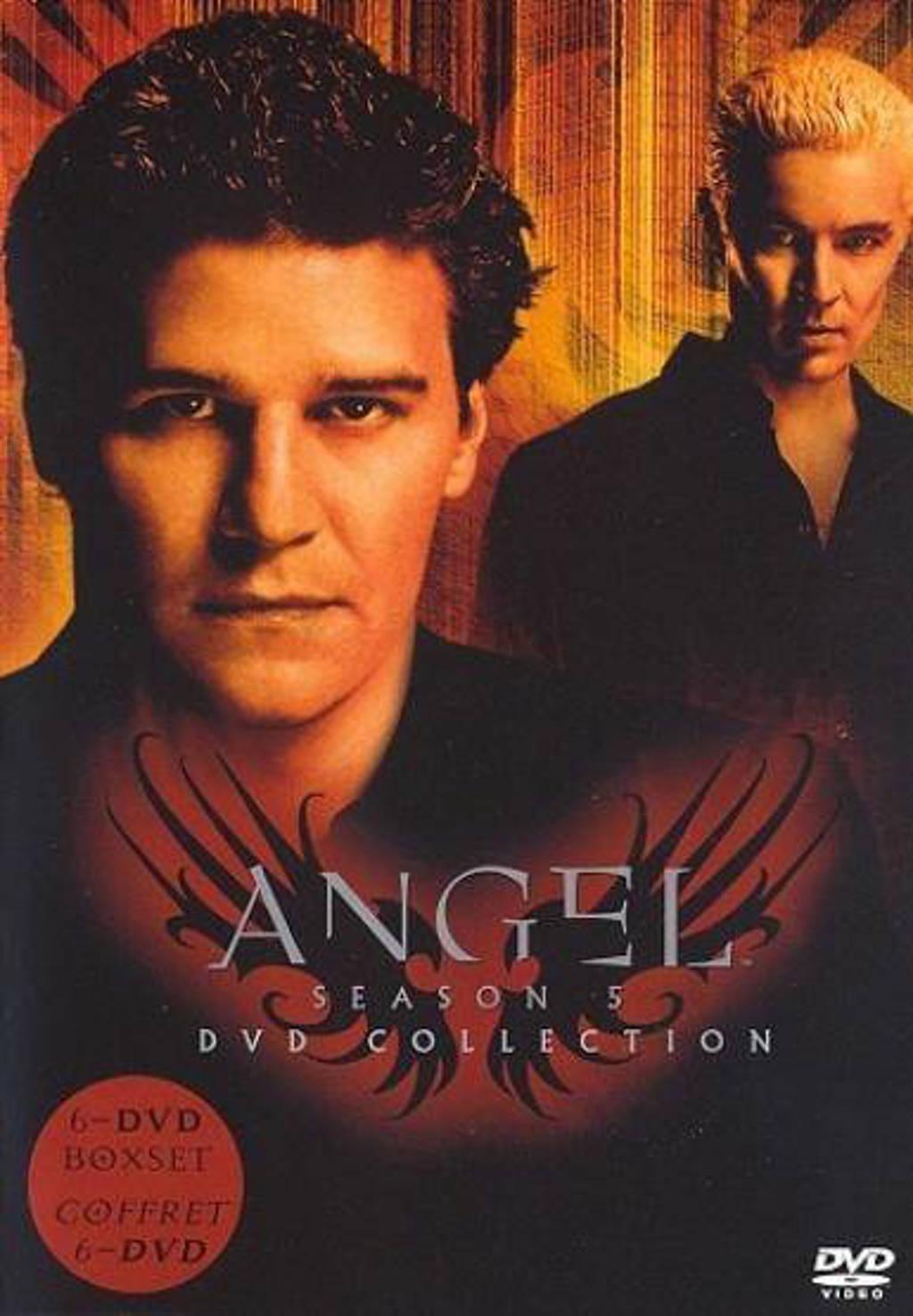 Angel - Seizoen 5 (DVD)