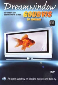 Dream window - goudvis (DVD)