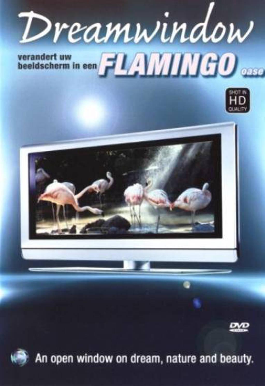 Dream window - flamingo's (DVD)