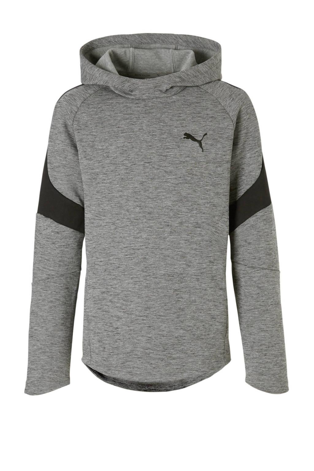Puma   Evostripe hoodie grijs, Grijs