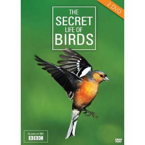 Secret life of birds (DVD)