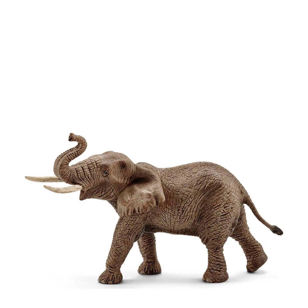 Wild Life afrikaanse olifant mannetje 14762