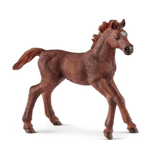 Horse Club engelse volbloed veulen 13857 kopen