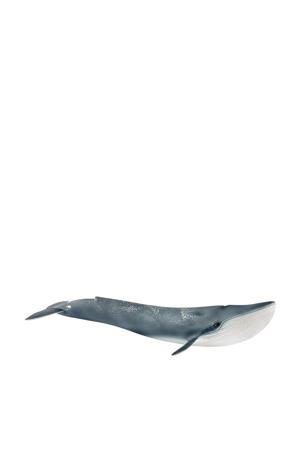 blauwe walvis 14806