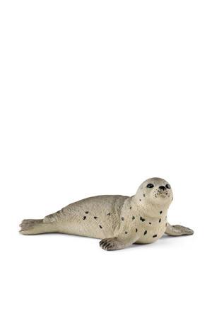 jonge zeehond 14802