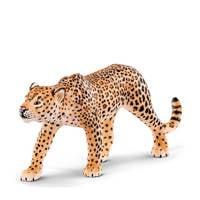 Wild Life luipaard 14748