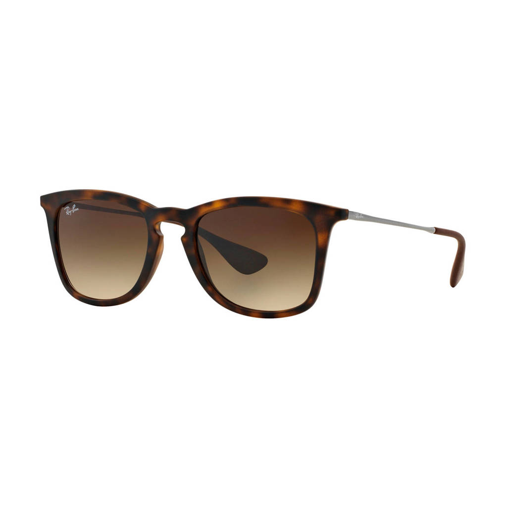 Ray-Ban zonnebril 0RB4221, Bruin