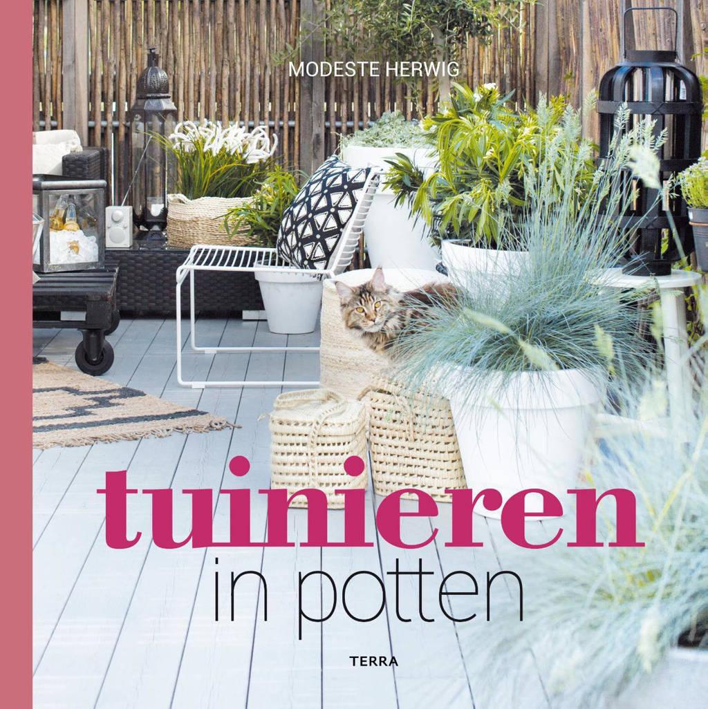 Tuinieren in potten - Modeste Herwig
