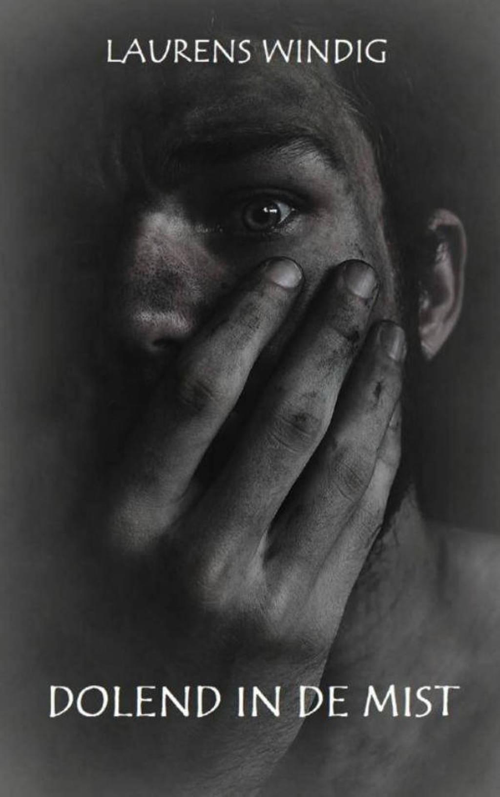 Dolend in de mist - Laurens Windig