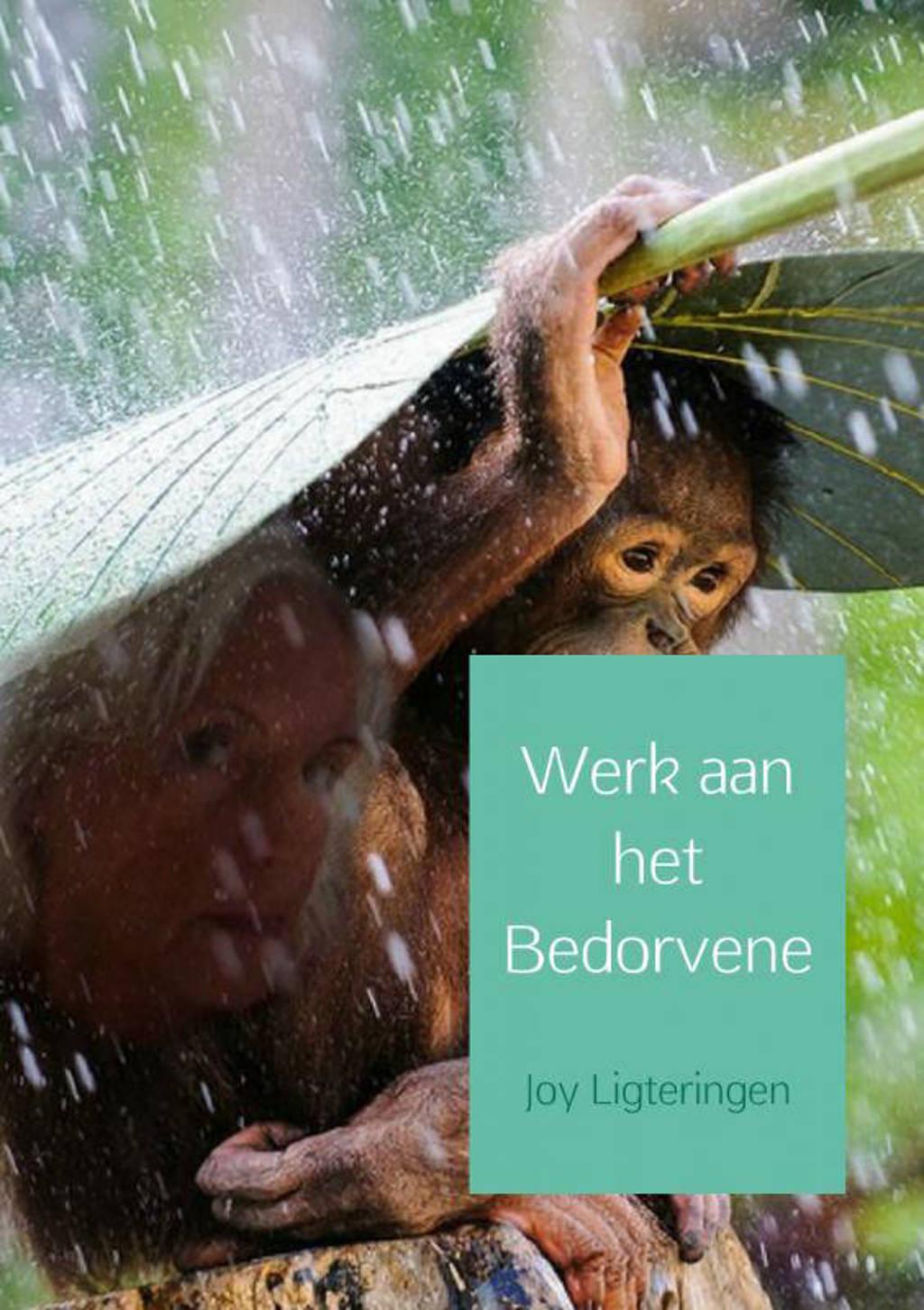 Werk aan het bedorvene - Joy Ligteringen