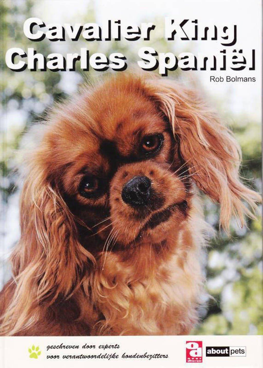 Over Dieren: Cavalier King Charles spaniël - R. Bolmans