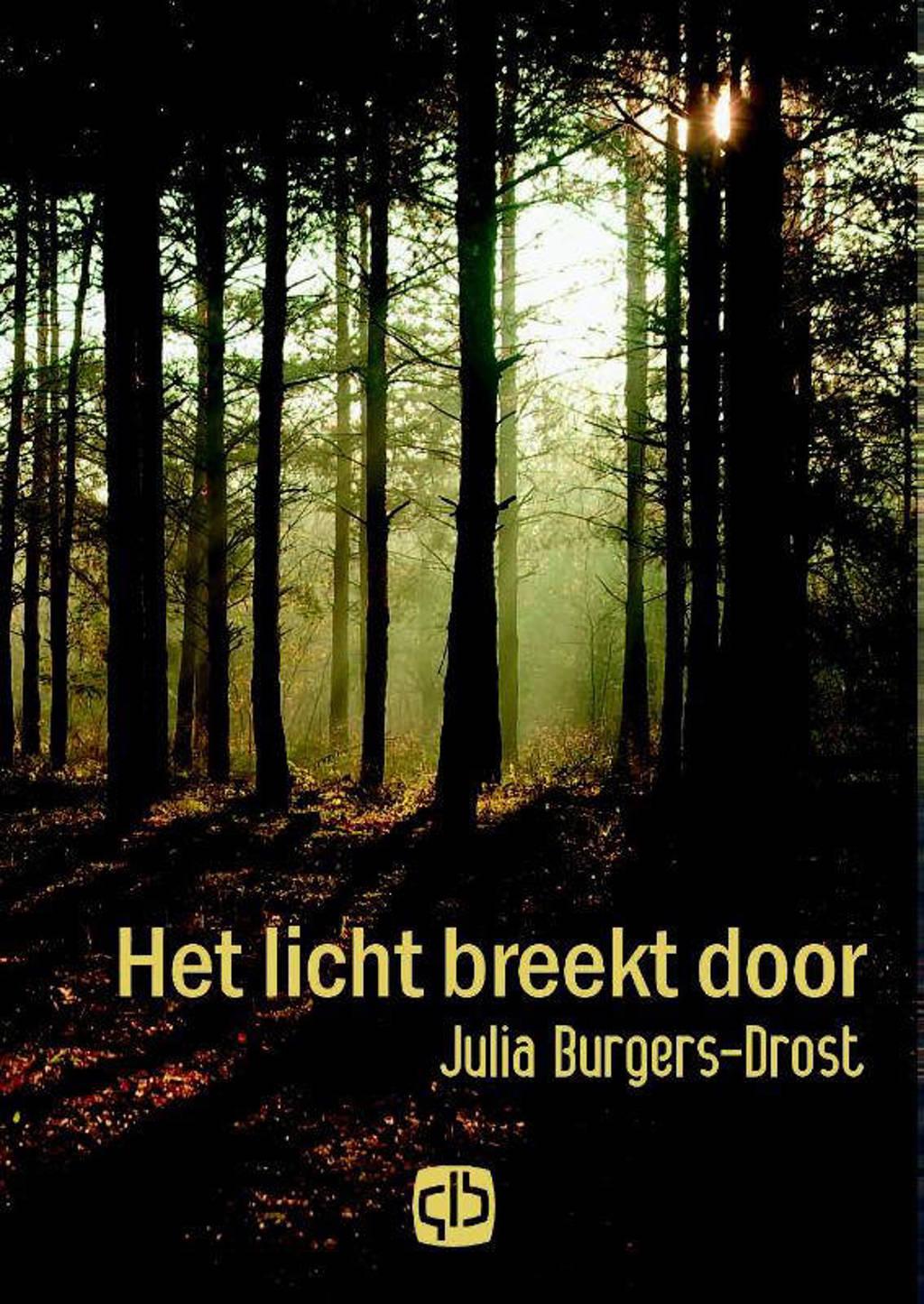 Het licht breekt door - Julia Burgers-Drost