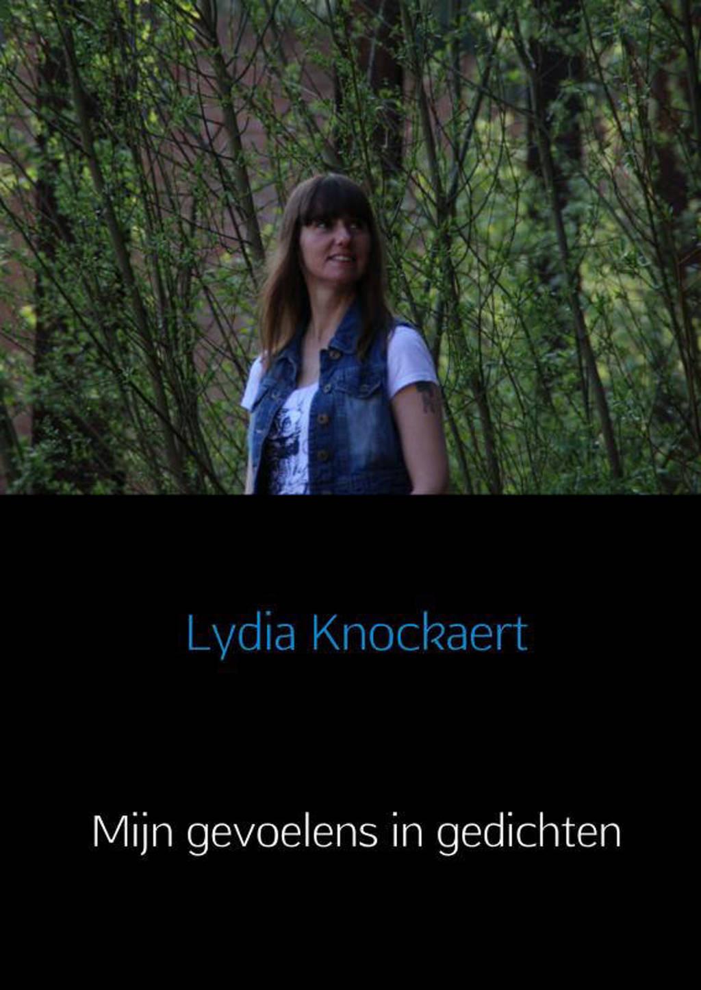 Mijn gevoelens in gedichten - Lydia Knockaert