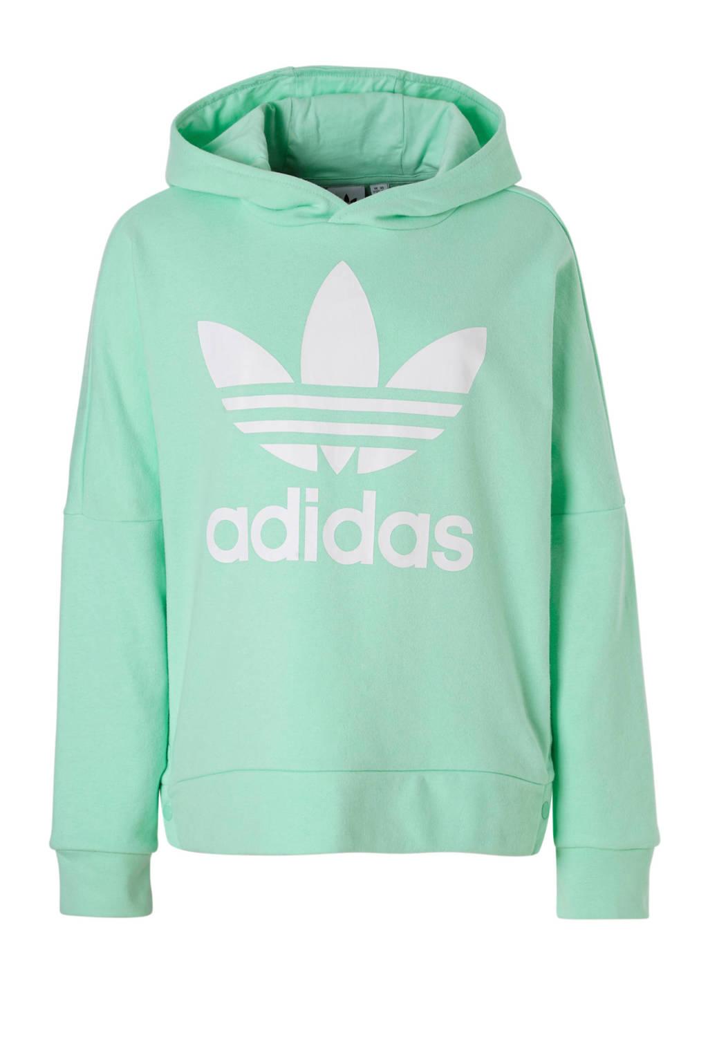 adidas originals   hoodie mintgroen, Mintgroen