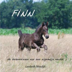 Finn - Liesbeth Wesdijk
