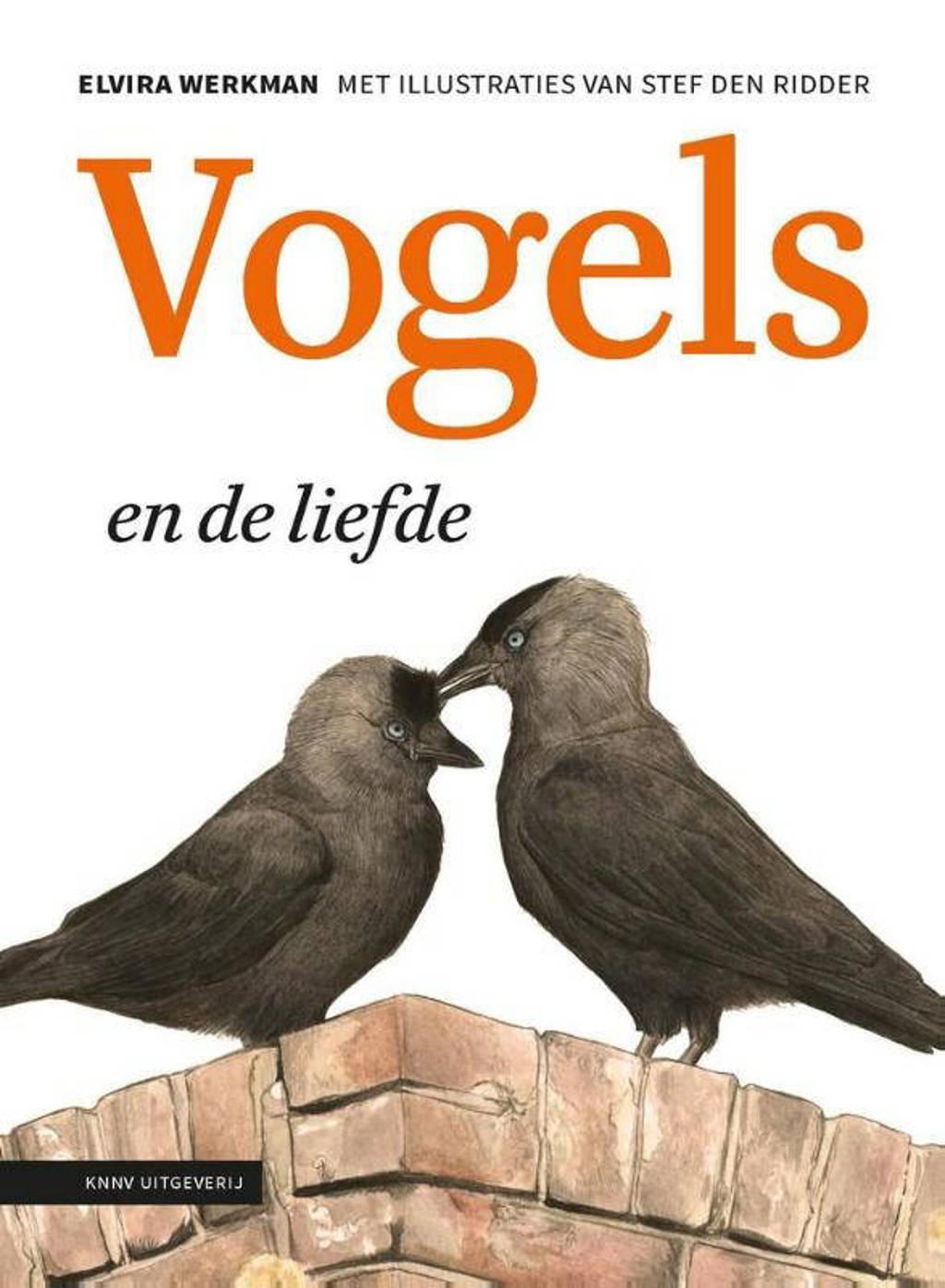 Vogels en de liefde - Elvira Werkman