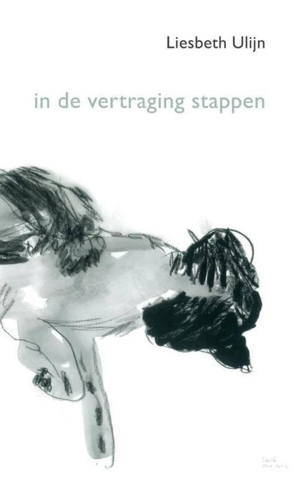 in de vertraging stappen - Liesbeth Ulijn