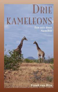 Drie kameleons - Frank van Rijn
