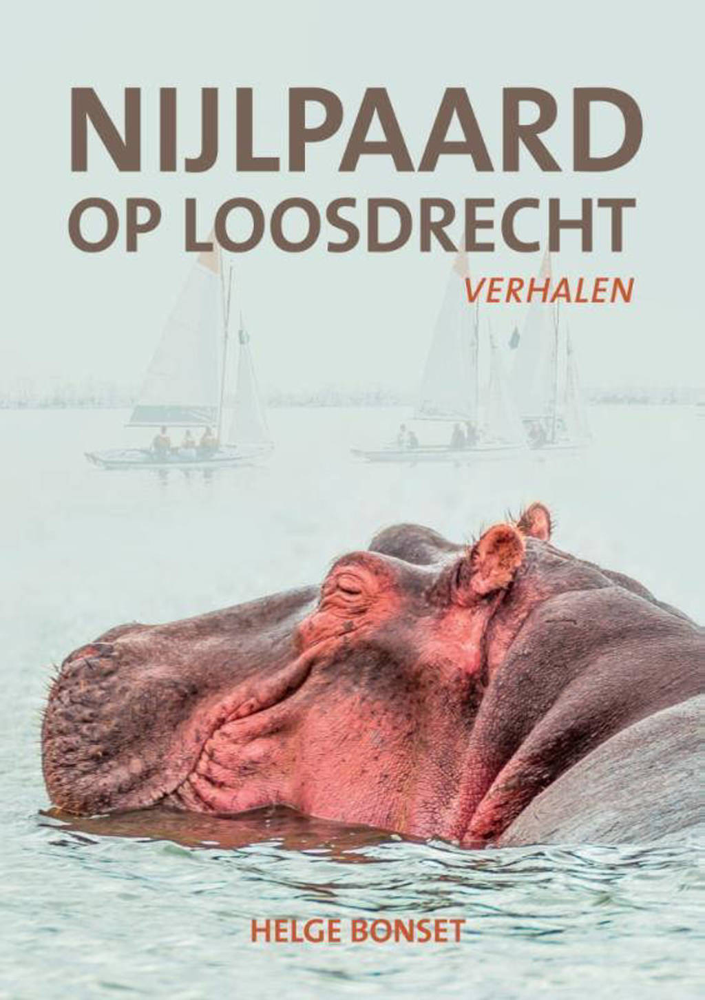 Nijlpaard op Loosdrecht - Helge Bonset