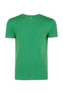 WE Fashion T-shirt groen