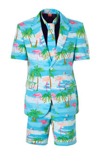 Opposuits Flaminguy kostuum (heren)