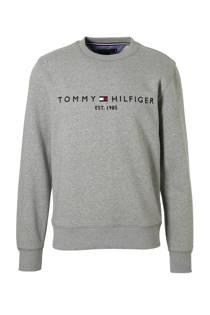 Tommy Hilfiger  sweater (heren)