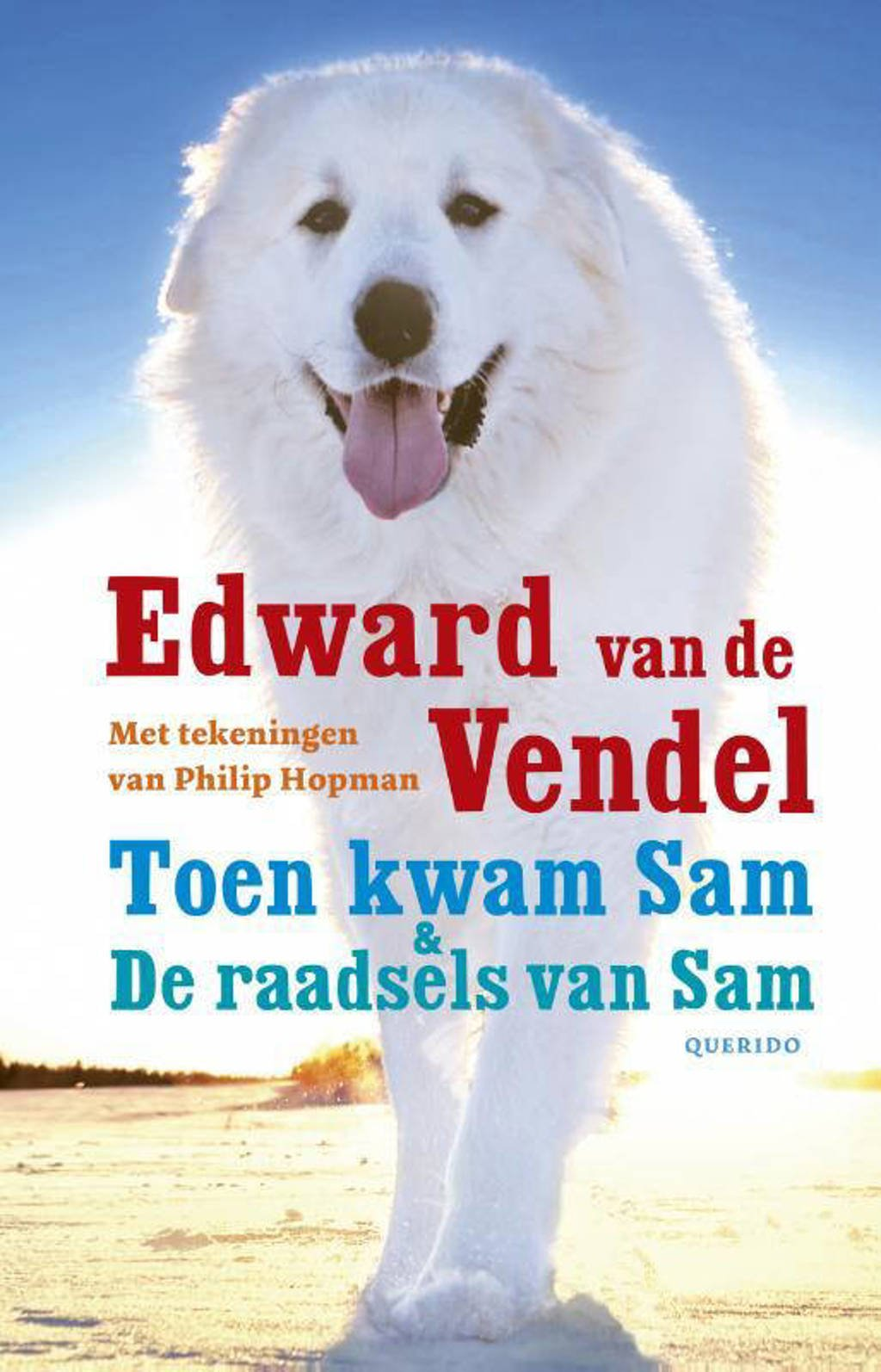Toen kwam Sam & De raadsels van Sam - Edward van de Vendel