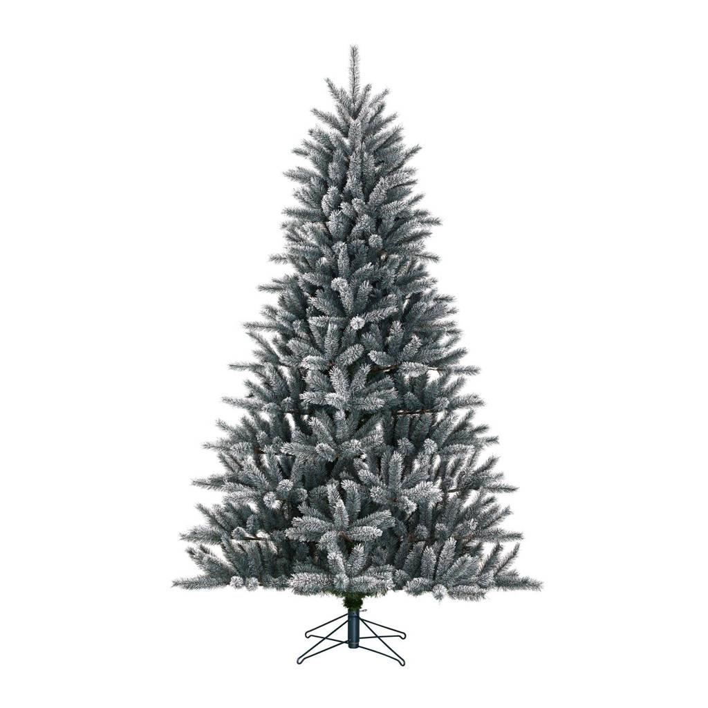 Black Box kerstboom Caroline (h120 x Ø80 cm)
