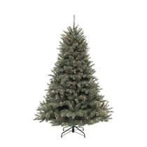 https://images.wehkamp.nl/i/wehkamp/16090347_pb_01/Triumph_Tree_verlichte_kerstboom_Forest_Frosted_(h215_x_%C3%98140_cm).jpg?$pop210x210$