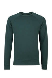 WE Fashion  slim fit sweater donkergroen (heren)