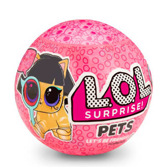 Pets Ball- series Eye Spy 2