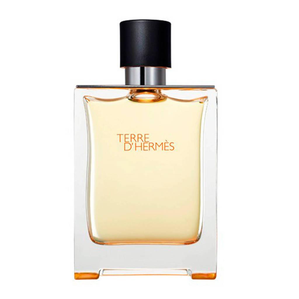 Hermes Paris Terre d'Hermes eau de toilette - 100 ml