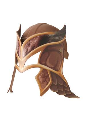 Raveleijn helm bruin incl. masker Joost