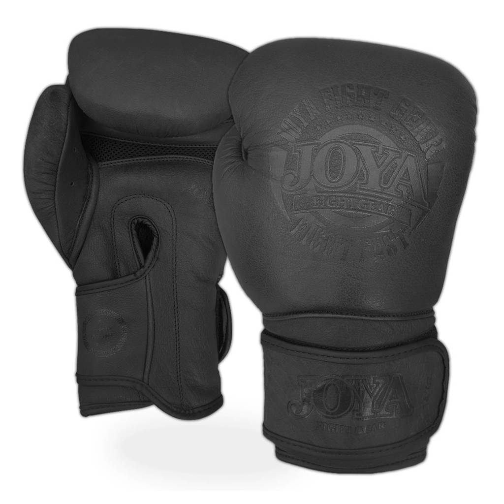 Joya leren (kick) bokshandschoenen Fight Fast - 12 oz