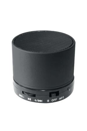 BTS300  Bluetooth speaker