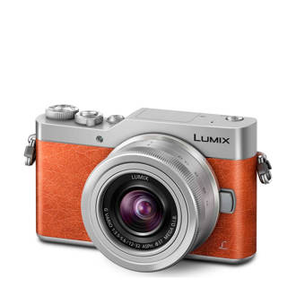 Panasonic Lumix DC-GX800 systeem camera