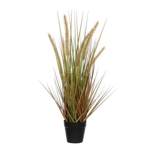 Mica kunstplant Dogtail (h53 cm) kopen