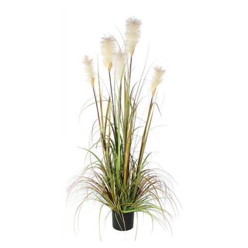 Mica kunstplant pluimgras (h150 cm) kopen