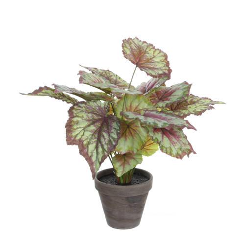 Mica kunstplant Begonia (h40 cm) kopen