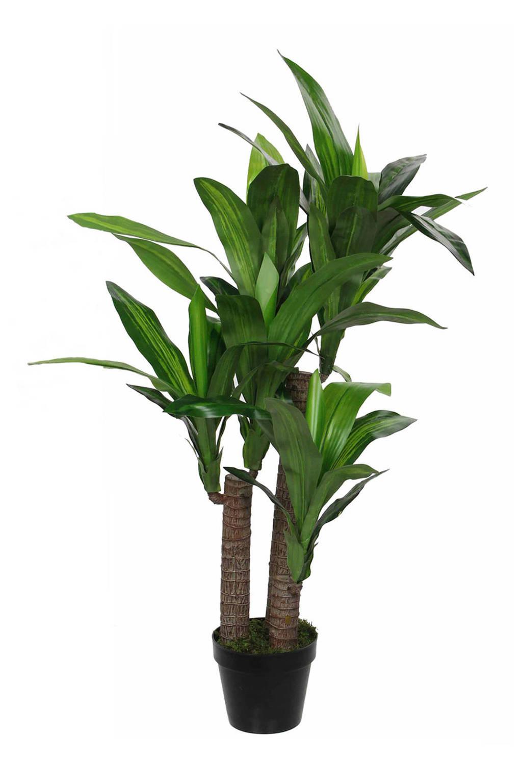 Mica kunstplant Dracaena (h110 cm), Groen/zwart