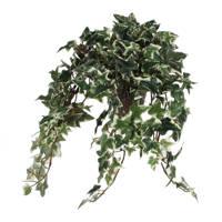 Mica Decorations kunstplant Hedera (h25 cm), Groen