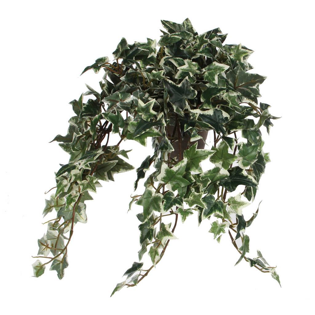 Mica kunstplant Hedera (h25 cm), Groen
