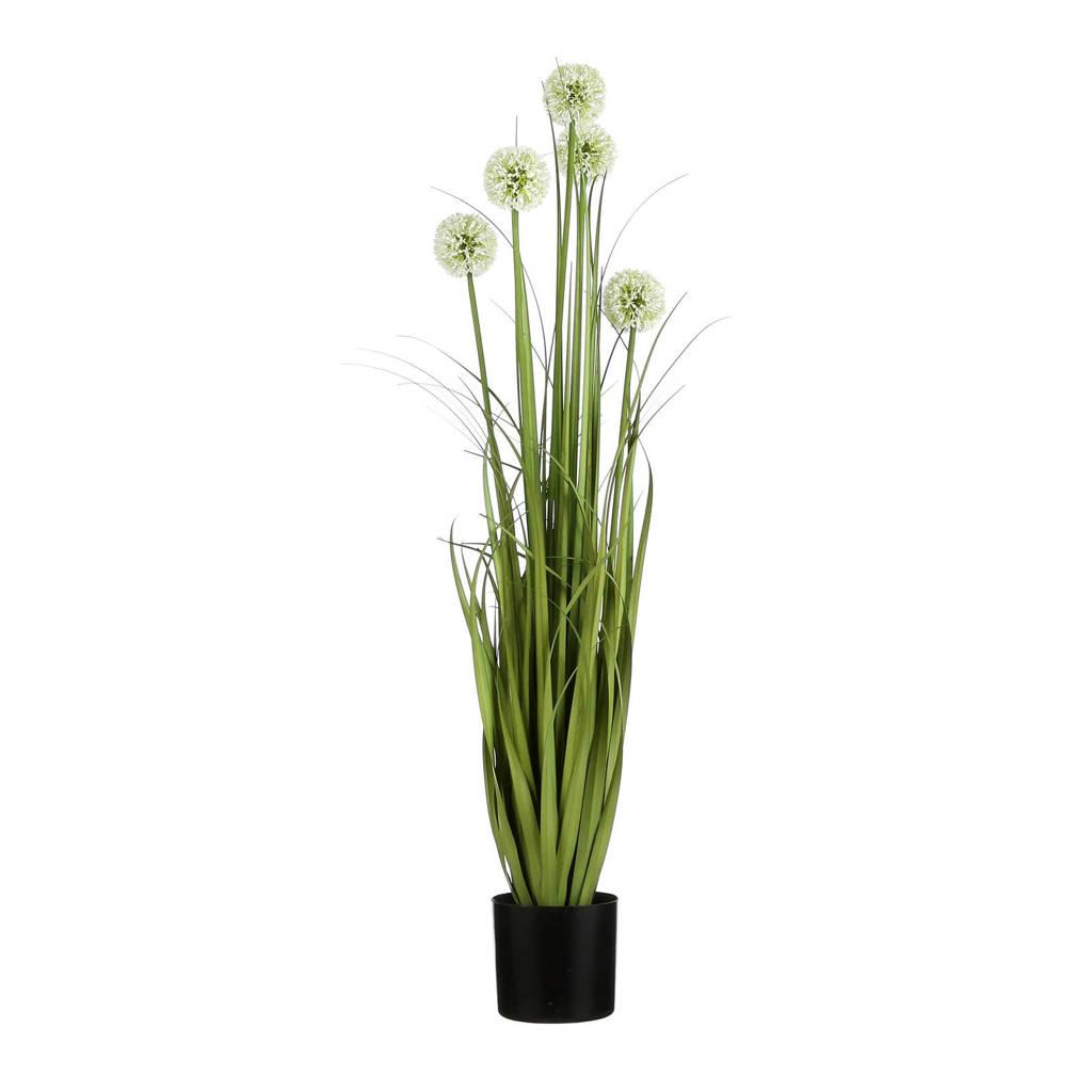 Mica kunstplant Allium (h90 cm), Groen/wit
