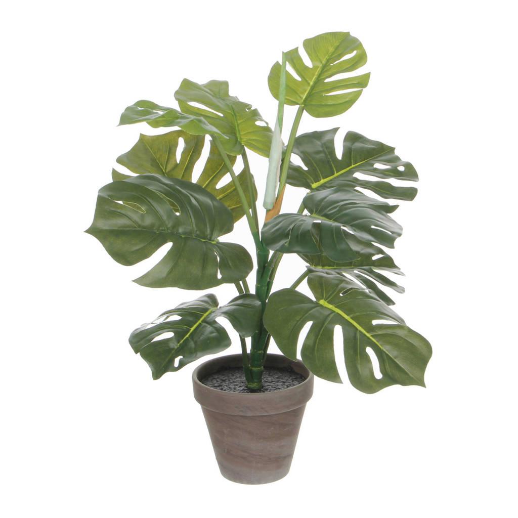 Mica kunstplant Philo (h48 cm), Groen